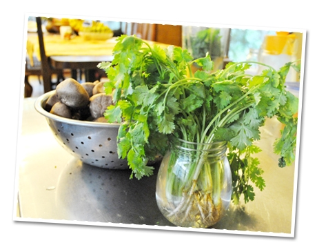 Herbs in Green Smoothies | The Superfood Grocer Philippines