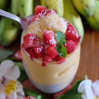 Mango Nicecream with Chia Pudding | The Superfood Grocer Philippines