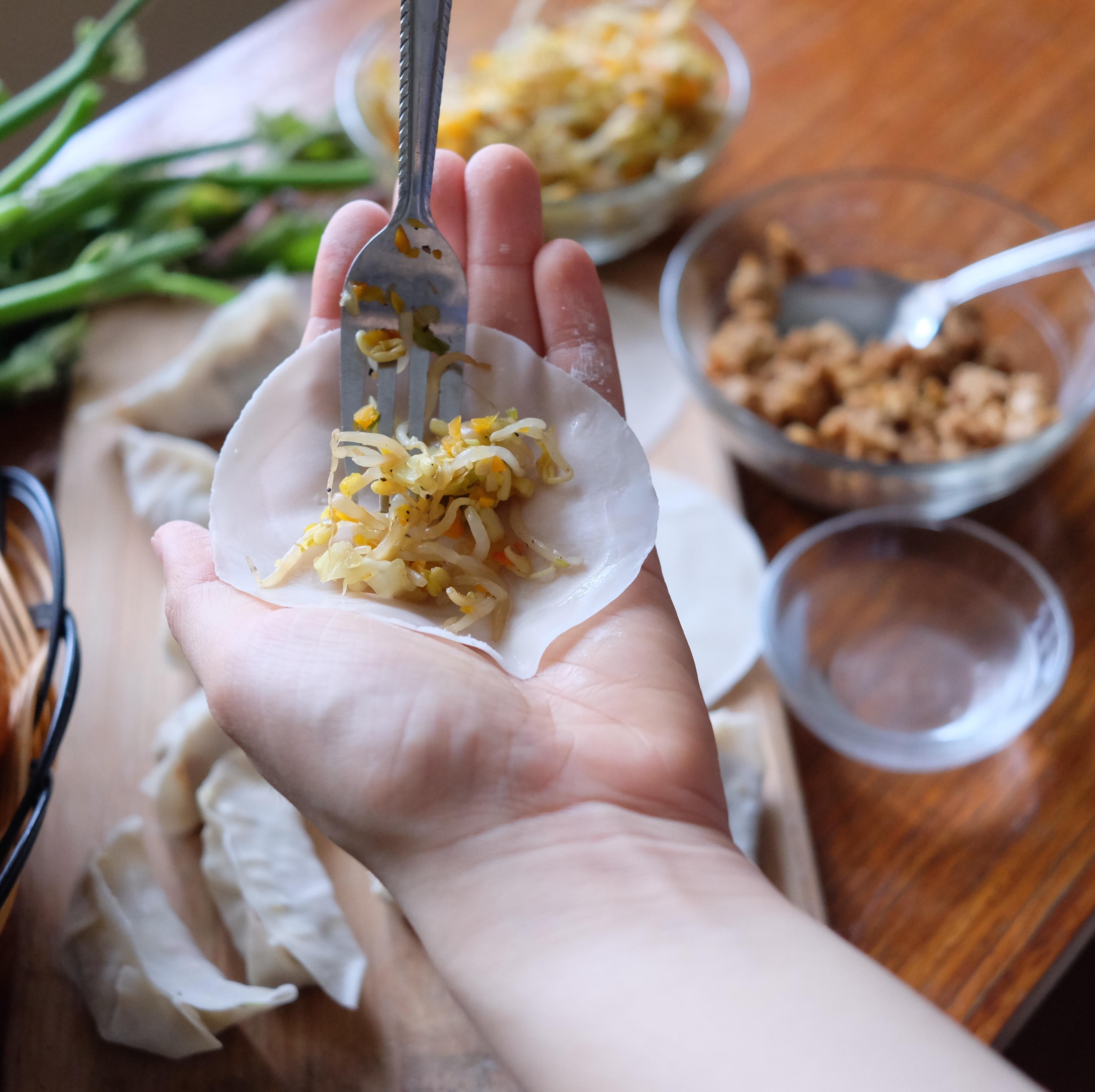 Super Tempeh Vegetable Dumplings Recipe - The Superfood Grocer Philippines